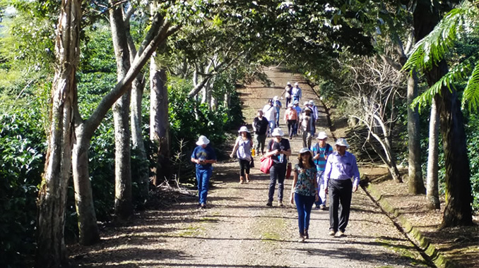 Coffee producers from 18 countries visit Costa Rican coffee region for knowledge exchange